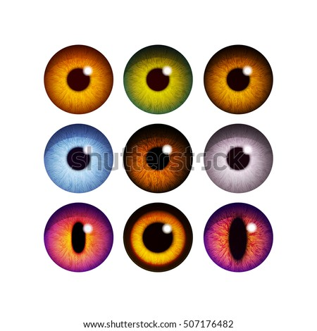 the human pupil of the eyeball