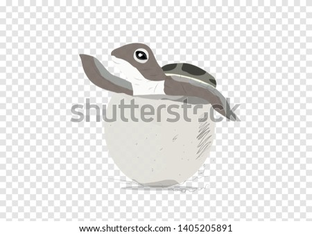 the illustration of sea turtle