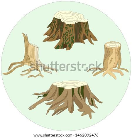 the illustration shows 4 stumps