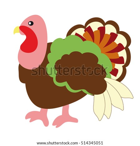 The image of a bird - a Turkey on a white background.