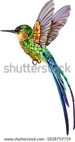 The image of a small bird. Vector stock photo