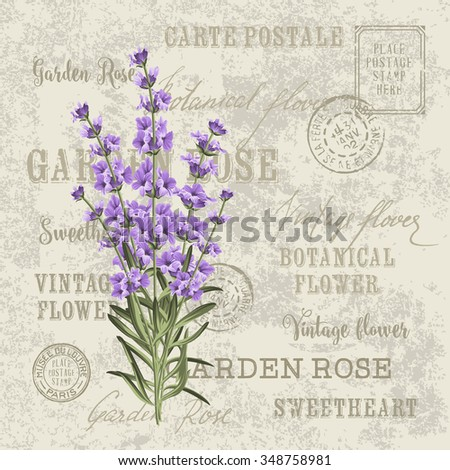 the lavender elegant card