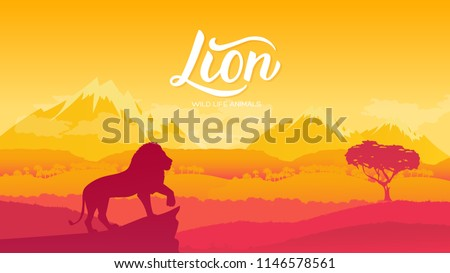 The Lion King of Animals is viewing his possessions illustration. Wild animal against the background of nature africa concept. Wild animal in the savannah.
