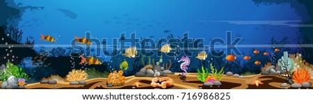 the marine landscape the ocean