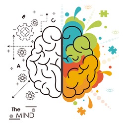 the mind brain human functions left right design
