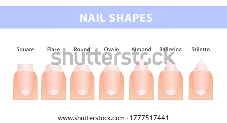 The most popular forms of nails. Different types of nails. Manicure Guide. Photo stock ©