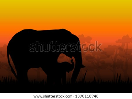 the nature of elephants and
