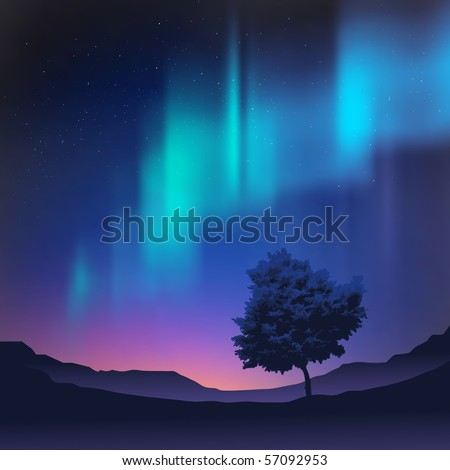 the northern lights with a tree