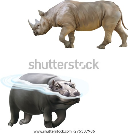 the northern white rhinoceros