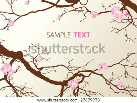The Oriental cherry blossoms