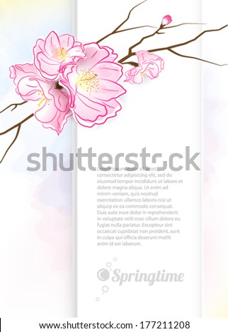 The Oriental cherry blossoms. Springtime. Vector