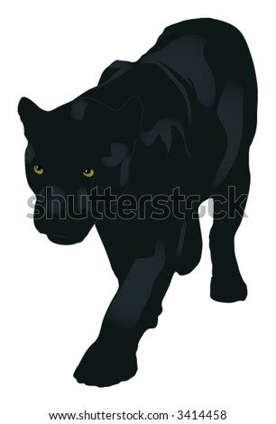 the panther (vector)