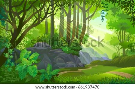 the path across a dense jungle