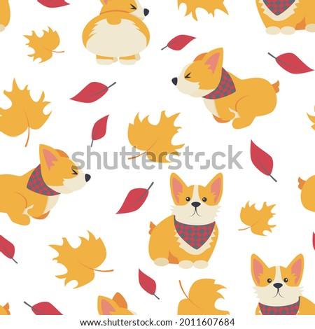 the pattern is dog  corgi
