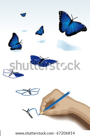 The pencil drawing blue butterflies