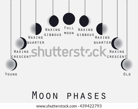 The Moon Phases Process Vector Download Free Vector Art Stock