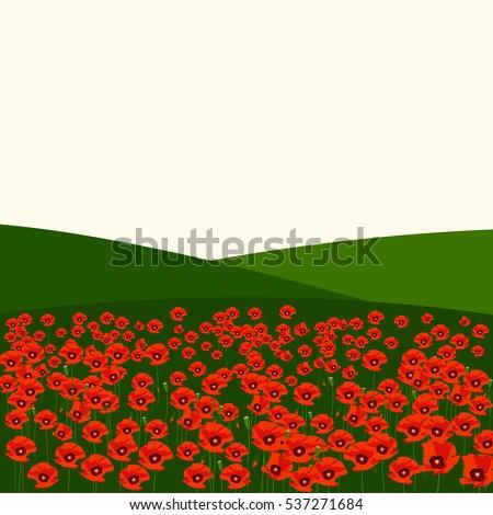 the poppy field vector