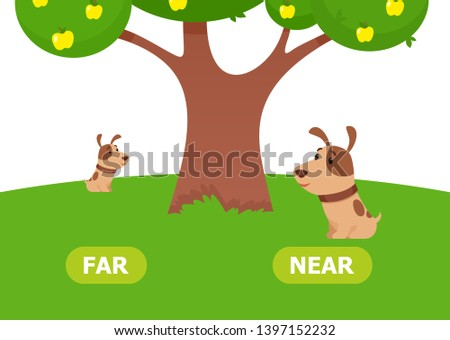 The puppy is near and far. Illustration of opposites near and far. Card for teaching aid, for a foreign language learning. Vector illustration on white background, cartoon style. Foto d'archivio ©