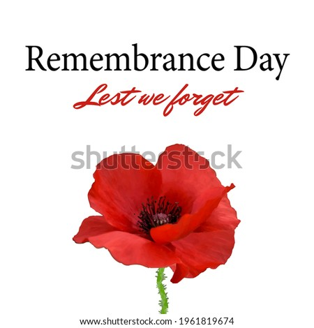 The remembrance poppy - poppies appeal. Modern paper design isolated on white. Decorative vector flower for Remembrance Day, Memorial Day, Anzac Day in New Zealand, Australia, Canada, Great Britain.