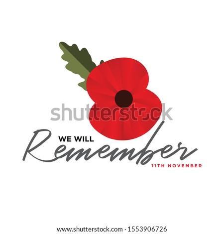 the remembrance poppy   poppy