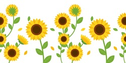 The Seamless pattern of sunflower and leaves on white background in flat vector.Illustation about sunflower for banner , background and greeting card.