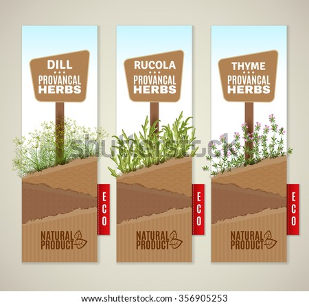 The set of three vertical banners with Provencal herbs. Herbs de Provence banners. Vector banners