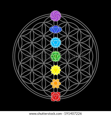 the seven main chakras  which