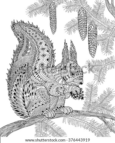 The Squirrel For Adult Anti Stress Coloring Page For Art ...