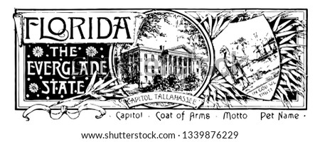 The state banner of Florida the everglade state this seal has state house in center THE EVERGLADE STATE in right side and shield shape with a farmer in left side vintage