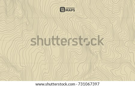 The stylized height of the topographic contour in lines and contours. The concept of a conditional geography scheme and the terrain path. Vector illustration.