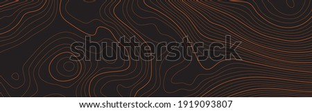 The stylized height of the topographic map contour in lines and contours. The concept of a conditional geography scheme and the terrain path. Orange on black. Ultra wide size. Vector illustration.
