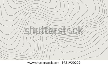 The stylized height of the topographic map contour in lines and contours. The concept of a conditional geography scheme and the terrain path. Wide Size. Vector illustration.