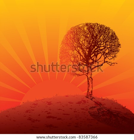 The tree at sunset. Vector illustration.