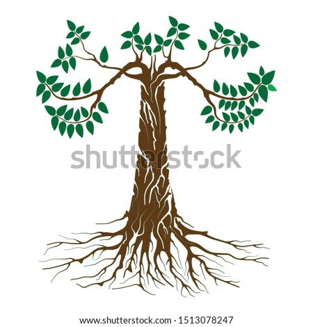 the tree of life is dark brown green leafy