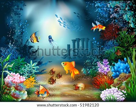 the underwater world of fish
