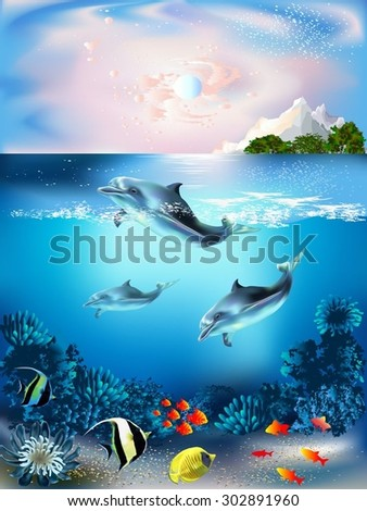 the underwater world with
