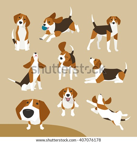 The various operations of cute beagle