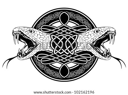 The vector image of head of snake and Celtic patterns - stock vector