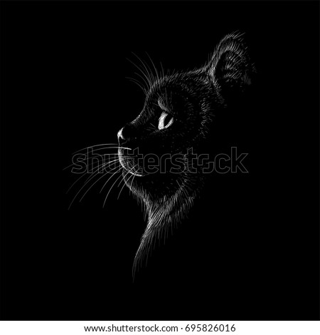 the vector logo cat for t shirt