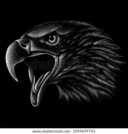 stock-vector-the-vector-logo-eagle-for-t-shirt-design-or-outwear-hunting-style-eagle-background