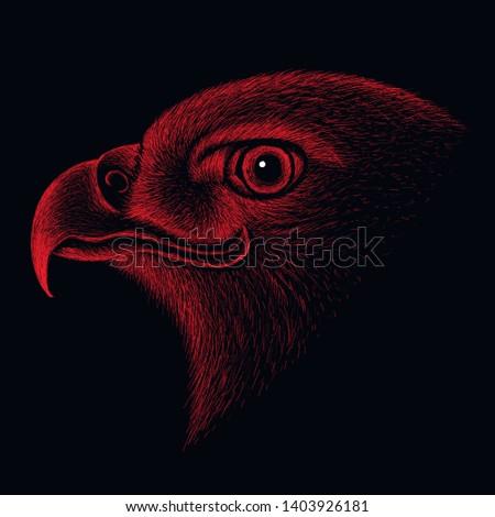 the vector logo eagle for