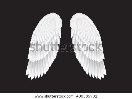 the vector white wings on black