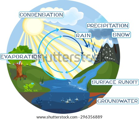 Water cycle diagram download free vector art stock graphics images the water cycle ccuart Gallery