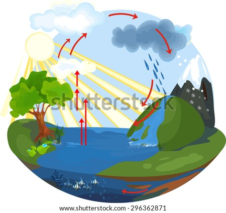 Water cycle diagram download free vector art stock graphics images the water cycle ccuart Choice Image