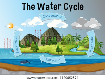 The water cycle diagram illustration