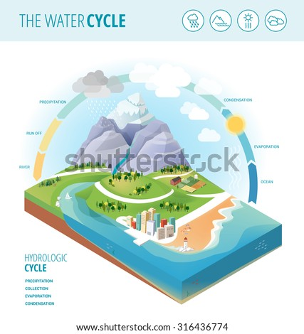 the water cycle diagram showing