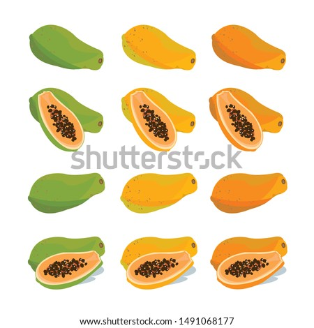 The whole and half Papaya, pawpaw for three color a tropical fruit vector. Stock photo ©