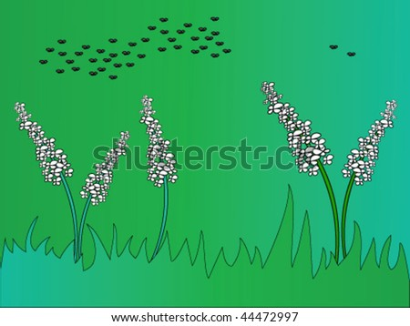 There are five plants with white inflorescence in the grass-plot and black flies are swarming high up.