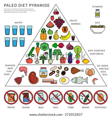 the paleolithic diet definition