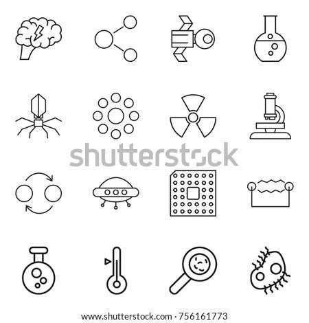 thin line icon set   brain